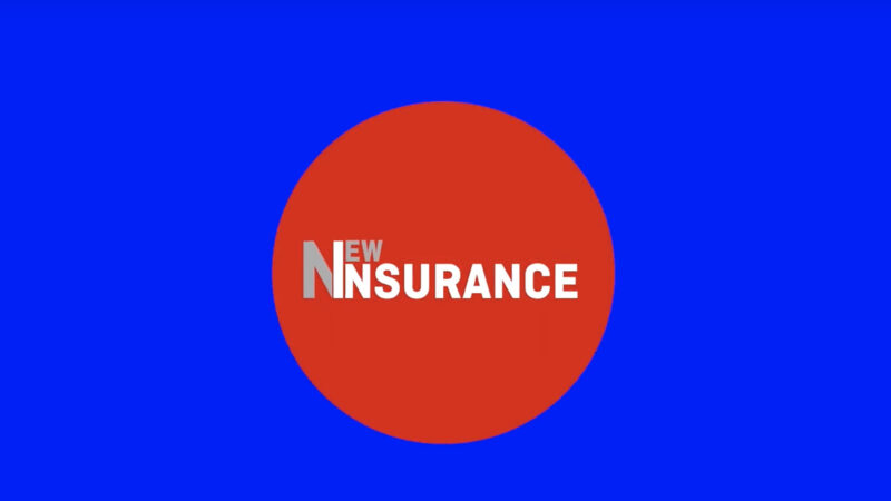 New Insurance - Capitale Umano